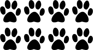 Dog Paw Print Colouring Pages