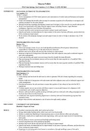 Download Telemarketing Manager Resume Sample As Image File