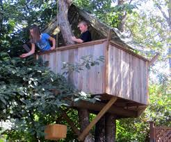 Backyard Projects 10 Fun Playgrounds And Treehouses For Your Backyard Munamommy Best 25 Treehouse Kids Ideas On Pinterest Plans Simple Tree House How To Build A Magician Builds Epic In Youtube Two Story Fort Stauffer Woodworking For Kids Ideas Tree House Diy With Zip Line Hammock Habitat Photo 9 Of In Surreal Houses That Will Make Lovely Design Awesome 3d Model Free Deluxe