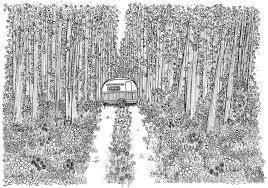 Happy Camper Ink Drawing By Natasha Phillips