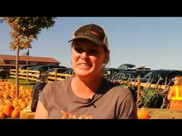 Tims Pumpkin Patch by Tim U0027s Pumpkin Patch Record Setting Pumpkin Picking Day Youtube