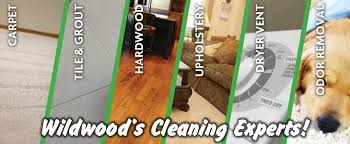 carpet cleaning tile cleaning wildwood fl gator clean