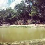 image de Boninal Bahia n-15