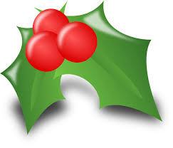 Holly Ilex Leaves Thorny Spiky Christmas Holidays