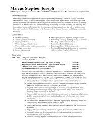Summary For Cv Example
