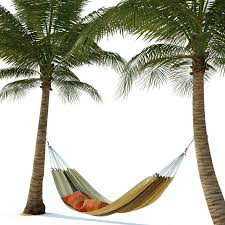 Hammock on palm trees 3D model