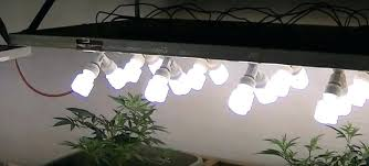 Marvelous Fluorescent Grow Lights Example Grow Light Set Up