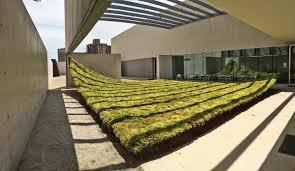 100 Nomad Architecture GreenVarnish05CAMStLouisnomad Landscape Works