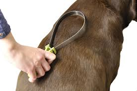 Shedding Blade For Horses by Safari Dual Sided Shedding Blade Dog Grooming Tool Chewy Com