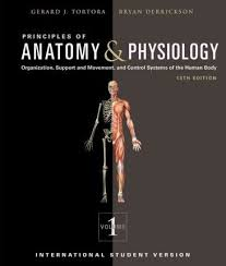 Best Anatomy And Physiology Coloring Book Photography Gallery Sites