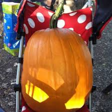 Best Pumpkin Patch Near Roseville Ca by Vierra Farms 149 Photos U0026 129 Reviews Farmers Market 3010