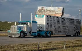 Bill To Reform HOS & ELD For Drivers Hauling Livestock, Ag Trucking The Worlds Best Photos Of 389 And Livestock Flickr Hive Mind About Metzger Agricultural Exemptions Instated For Regulations Pork Firms Worried Electronic Logging Device Could Hurt Henderson Jobs Otr Long Haul Truck Drivers West Land Cattle Hauler Jessica Lorees 2003 Pete 379 Livestockcattle Haulers Sale Llc Kenworth T800 With 4 Axle Tra Truck Spill Cleaned Up A Lot Help Krvn Radio Australian Livestock Rural Transporters Association