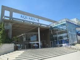 aquarium la rochelle quai louis prunier bp 4 17002 la