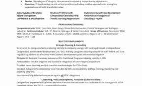 It Manager Resume Examples 2016 Beautiful Employment Template Takenosumi