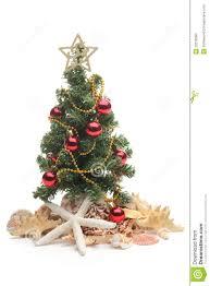 Seashell Christmas Tree Topper by Seashell Christmas Tree Christmas Lights Decoration