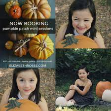 Atlanta Pumpkin Patch Corn Maze by Fall Family Pumpkin Patch Mini Sessions In Atlanta And North