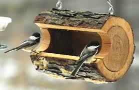 The Zen Birdfeeder Feeder Birds