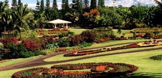 Nani Mau Gardens Reviews