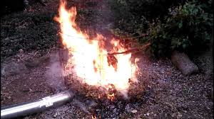 The Best Way To Burn Leaves - YouTube Evergreen Winter Damage Learn About Treating And Preventing Cheat With Low Tunnels Fall Leaf Burn Youtube Fire Pit Safety Maintenance Guide For Your Backyard Installit Outdoor Burning Nonagricultural Bay Leaves In The House And See What Happens After 10 Minutes Tips For Removing Poison Ivy Bush Insect Pests How To Identify Treat Bugs That Eat To Guidelines Infographic Dont Holly Hollies With Scorch Glorious Autumn My Minnesota Backyard Prairie Roots April Month Powell River Today