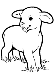 12 Best Ideas For A Lamb Tattoo Images On Pinterest