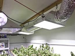 1000 Watt Hps Bulb Hortilux by 100 1000 Watt Hps Bulb Hortilux 4x4 Ft Floodtable 1000w