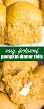 Solid Pack Pumpkin Nutrition by Pumpkin Dinner Rolls Soft Fluffy Roll Recipe For Holiday Dinner