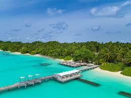 100 Kuramathi Island Maldives Dhoni Bar Resort Official Site
