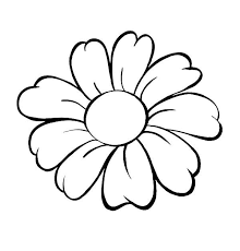 Daisy Flower Outline Coloring Page