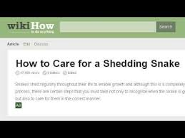 how to preserve a shed snake skin youtube