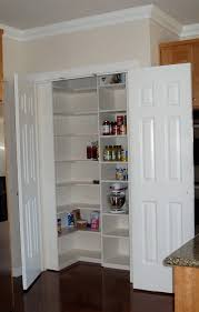 Pantry Cabinet Shelving Ideas by Small Closet Pantry Ideas Home Design Ideas