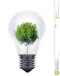 Plant Growing Inside The Light Bulb Stock Image of