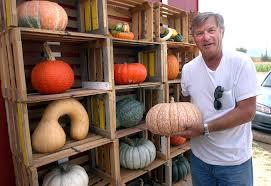 Boulder Creek Pumpkin Patch by 5 Questions Bob Munson Owner Of Munson Farms Boulder Daily Camera