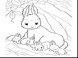 Easter Bunny Coloring Pages Pdf Rabbit Pictures To Print Rabbits Cute Baby Page
