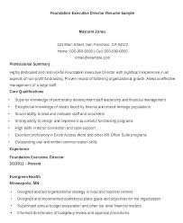 Sales Executive Resume Format Example Sample Doc