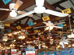 Menards Outdoor Ceiling Fan With Light by Ceiling Inspiring Ceiling Fan Stores The Lighting U0026 Fan Store
