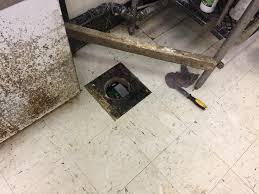 Floor Drain Backflow Device by 100 2 Floor Drain Backflow Preventer Stinky Plumbing
