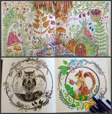 Adult Colouring Enchanted Forest By Johanna Basford