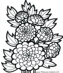 Large Size Flowers Coloring Pages Free Printable Flower Pictures To Print Page Adults Animals Realistic Full