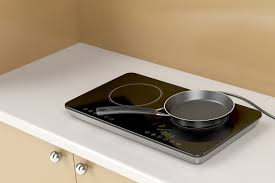 Best Portable Induction Cooktop Reviews