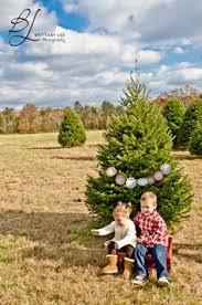Cartner Christmas Tree Farm by Engagement Photography At Thomley Christmas Tree Farm In