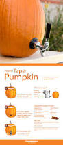 Preserving A Carved Pumpkin by Top 25 Best Pumpkin Carving Party Ideas On Pinterest Pumpkin