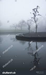 100 Minimalist Landscape Gloomy Bare Trees Mist Stock Photo