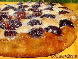 dessert aux quetsches recette gâteau aux quetsches au thermomix couleurdevie