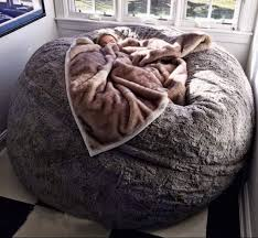Bean Bag Bed Shark Tank by This Beanbag Zip Up Bed On The Hunt