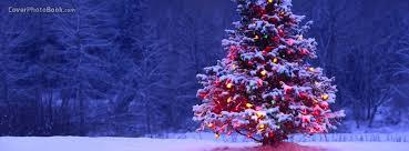 Christmas Tree Dark Free Facebook Timeline Profile Cover Holidays