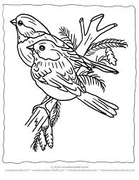 Printable Christmas Coloring Pages Birds For Wonderweirded Wildlife Winter To Color