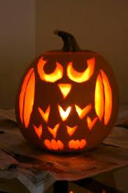 Owl Pumpkin Template by The 25 Best Owl Pumpkin Carving Ideas On Pinterest Owl Pumpkin