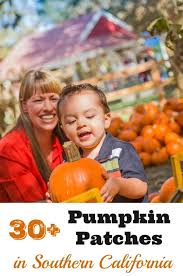 Shawns Pumpkin Patch Los Angeles Ca by 30 Awesome Pumpkin Patches In Southern California Socal Field Trips