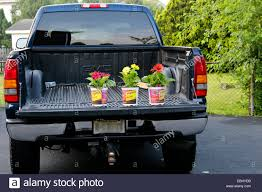 Potted Flower Plants In The Bed Of A GMC Pickup Truck Lorry Stock ... 1949 Studebaker Truck Dream Ride Builders Tm Beds For Sale Steel Frame Cm Dawson Public Power District The Anatomy Of A Maintenance Truck Bakflip Rollbak Bed Covers Rollbak Retracts And Rolls Up Transporting Motorcycle In The Bed Sleeping Platform Tacoma Can We Load A Camper In Youtube Living Your How Realistic Is Chevy Silverado Test Honda Pioneer 500 Sxs To Mount Mud Rear Removable Seat