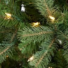 Downswept Douglas Fir Medium Pre Lit Christmas Tree Hayneedle